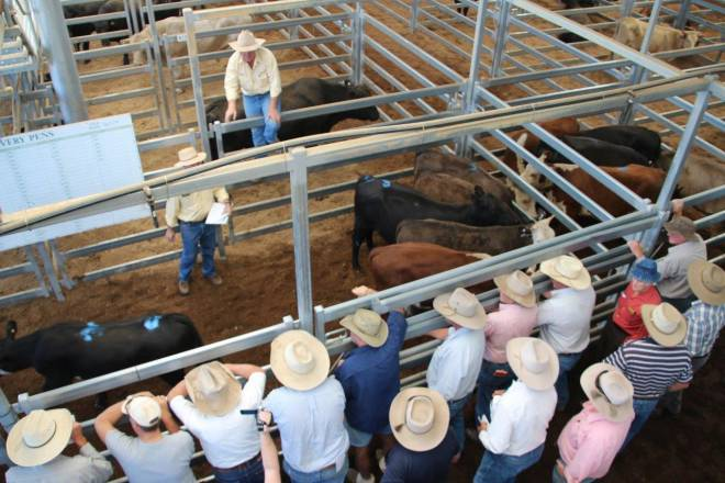 Sale Day Australia - We can take you there!