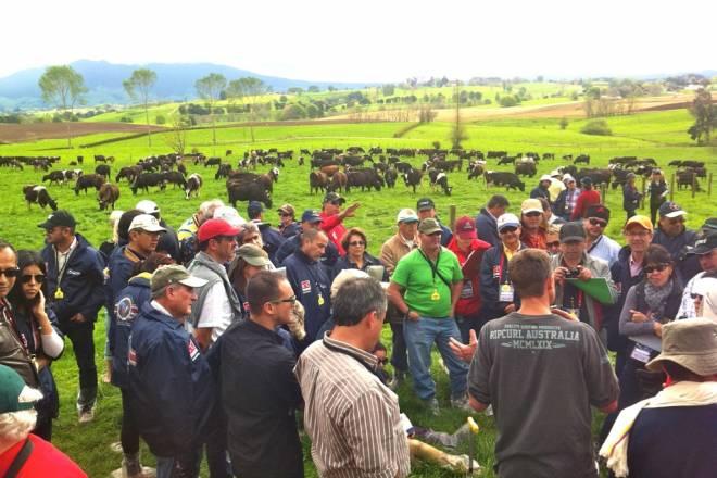New Zealand Dairy Tour