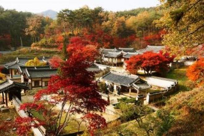 Autumnin South Korea