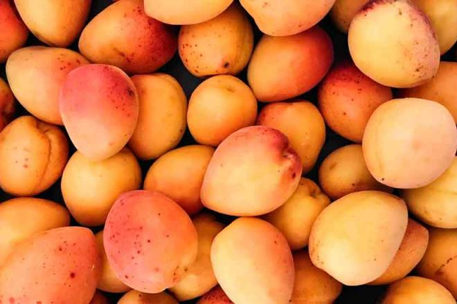 fresh mangos US$ 223 million (+21%)