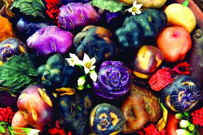 More than 5,000 potato varieties.
