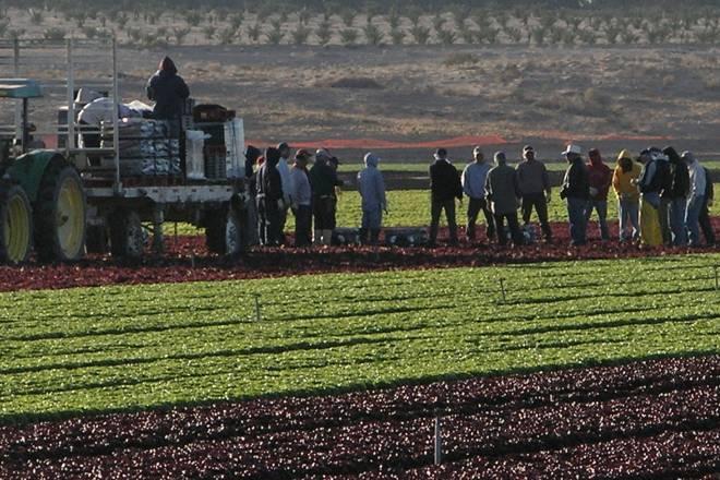 Farm Visit USA www.agtoursusa.com