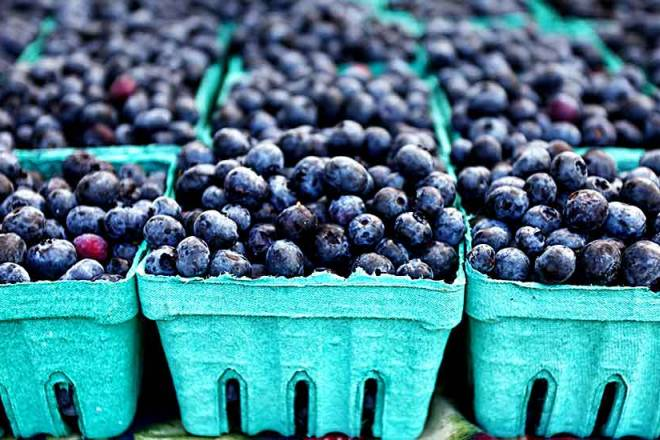 Peru will continue to supply blueberries to the world