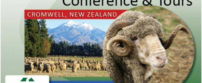 Merino Excellence 2020 - South Island New Zealand